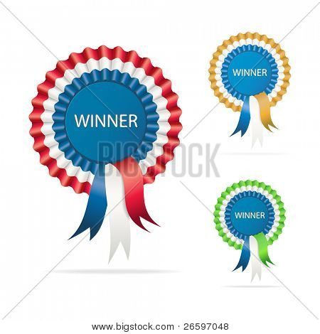Vector winner award