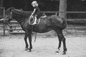 Girl Ride On Horse On Summer Day. Child Sit In Rider Saddle On Animal Back. Equine Therapy, Recreati poster