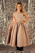 Elegance And Stylish Look. Elegance, Little Girl In Dress poster