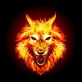 Head Of Aggressive Fire Woolf. Concept Image Of A Red Wolf And Flame On A Black Background poster