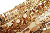 picture of saxy  - Background - JPG