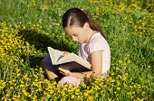 picture of girl reading book  - Girl reading a book on the grass - JPG
