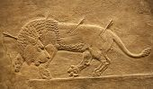 stock photo of babylonia  - Old assyrian relief of a lion being hunted with arrows - JPG