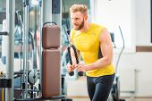 Handsome and determined bodybuilder exercising triceps pushdown at the rope cable machine during upp poster