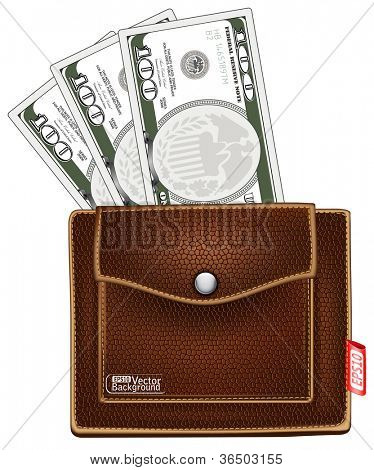 purse with money. vector