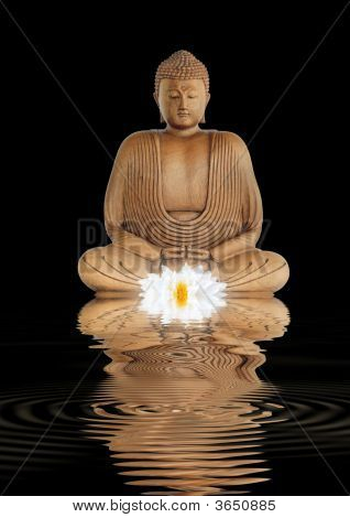 Buddha Contemplation
