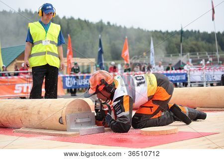 RAUBICHI, BELARUS - AUGUST 25: Japanese Akita Mitsugi performs precision bucking during World Logging Championship in Raubichi, Minsk region, Belarus at August 25, 2012