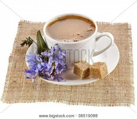 diet drink chicory in a cup -  coffee substitutes  with Cichorium flower