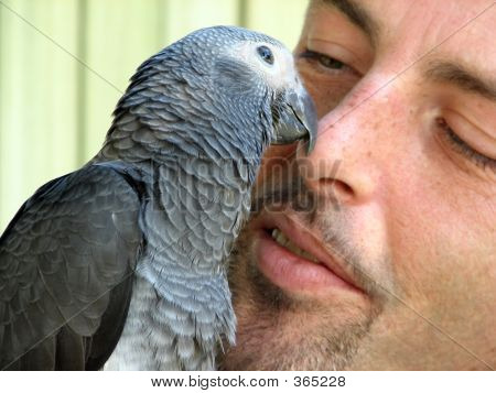 Bird And A Man