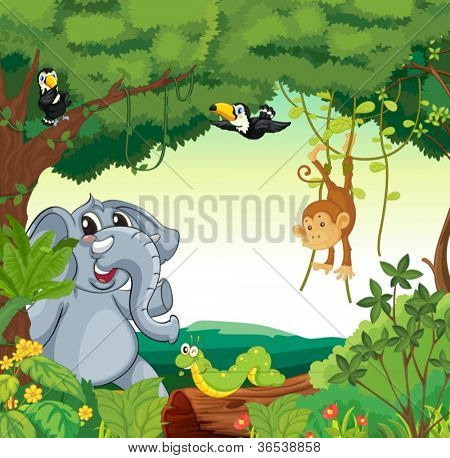 Illustration of a forest scene with different animals