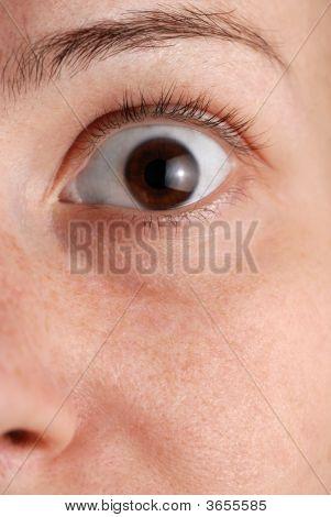 Eye - A Close Up