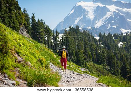 Hike in North Cascades National Park,Washington