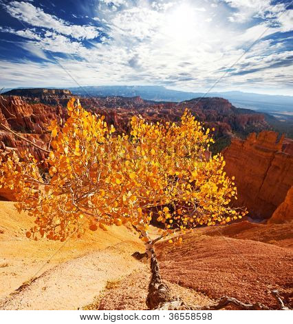 Bryce canyon in fall season