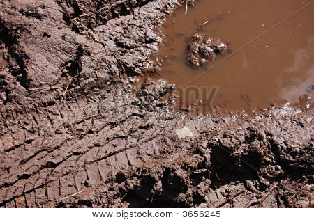 A Muddy Tread Mark