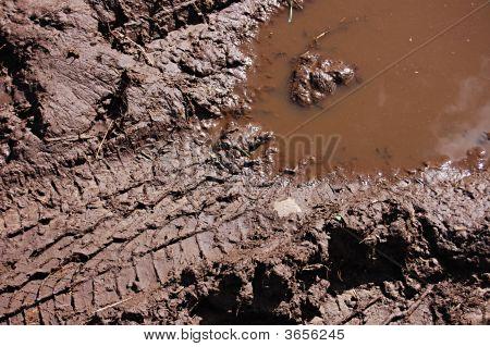 A Muddy Tread Mark