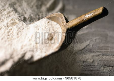 Flour Scoop