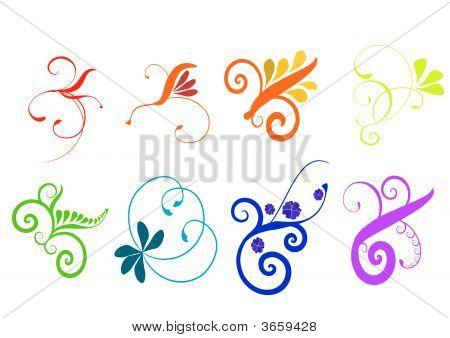Colorful Flourish Vector