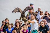 STARA LUBOVNA, SLOVAKIA - AUGUST 26: female falconer performing with her bird during Falconry Show i