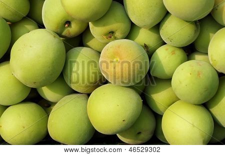 Chinese Green Plums