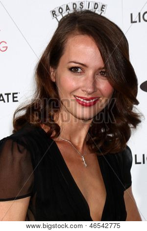 LOS ANGELES - JUN 5:  Amy Acker arrives at the