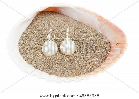 Two Pearl Earrings And Sea Shells On White