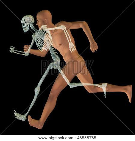 High resolution conceptual 3D human ideal for anatomy and health designs, isolated on black background. It is a man made of a skeleton and a transparent body as in a x-ray