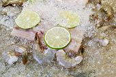 image of mahi  - Closeup horizontal photo of fresh raw white fish shrimp lime slices and crushed ices on top with natural stone underneath as background