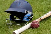 pic of cricket bat  - Cricket ball - JPG