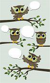 cute birds chat