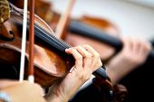 image of orchestra  - Detail of violin being played by a musician - JPG