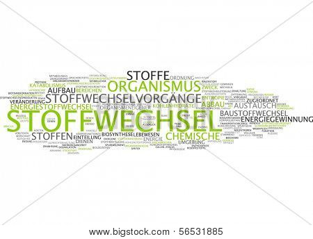 Word cloud -  metabolism
