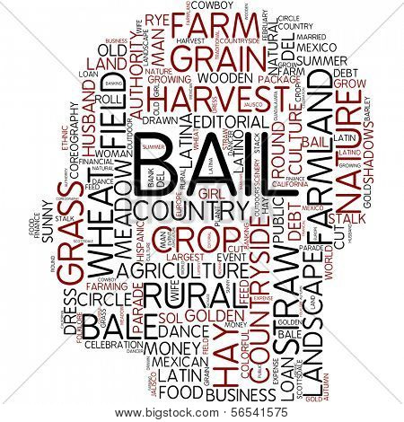 Info-text graphic - bail