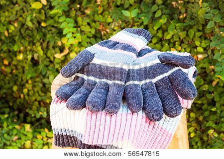 Knit Wool Gloves And Scarf