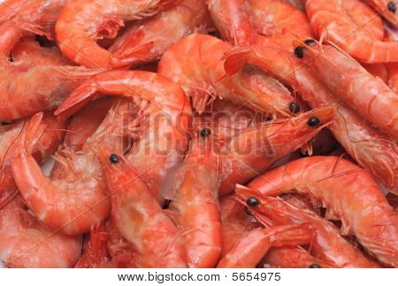 Frozen Shrimps