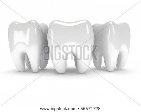 Teeth isolated on white background