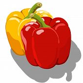 foto of chipotle  - Sweet pepper isolated on white background - JPG