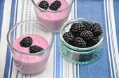 pic of top-less  - Greek Yoghurt with organic blackberries  and granola - JPG