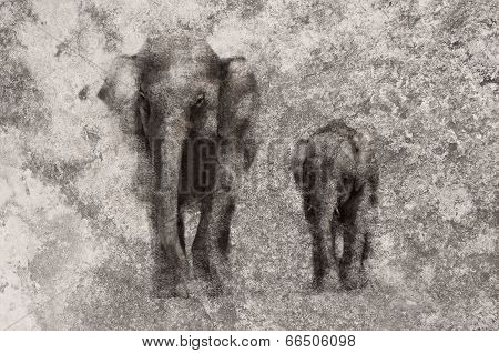 Elephant Painting On Dirty Old Grunge Cement Wall