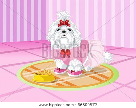 Cute Dog in Pink Room