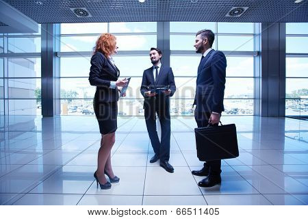 Portrait of group of white collar workers interacting in office
