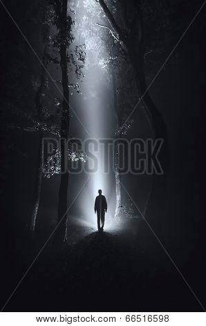 dark scene with man silhouette in forest at night