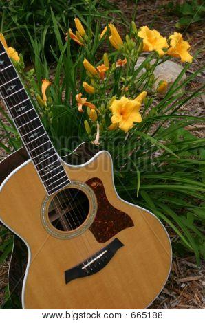 Guitar&Lillies