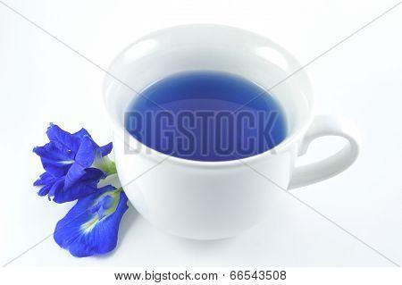Asian pigeonwings flower drink