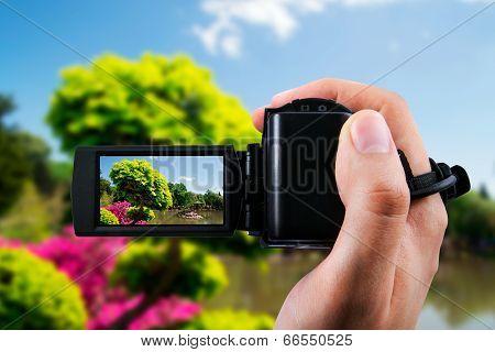 Video Camera Or Camcorder Recording Flora In Japanese Garden