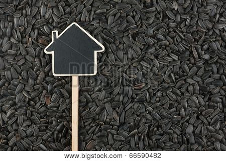 House Pointer, The Price Tag Lies On Sunflower  Seed