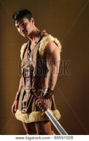 a handsome gladiator