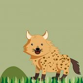 image of hyenas  - a colored hyena in a safari background - JPG