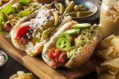 picture of wiener dog  - Gourmet Grilled All Beef Hots Dogs with Sides and Chips - JPG