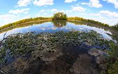 stock photo of kensington  - Scenic Kensington lake in Michigan in fish eye view - JPG