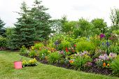 picture of manicured lawn  - Planting new flowers in a colorful landscaped garden with yellow celosia seedlings and a red bucket of potting soil standing ready on the manicured green lawn - JPG